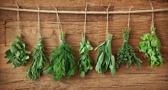 Il modo giusto per conservare le erbe aromatiche in cucina