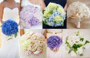 bouquet-sposa-ortensie-gardenie