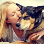abbracciare_cani